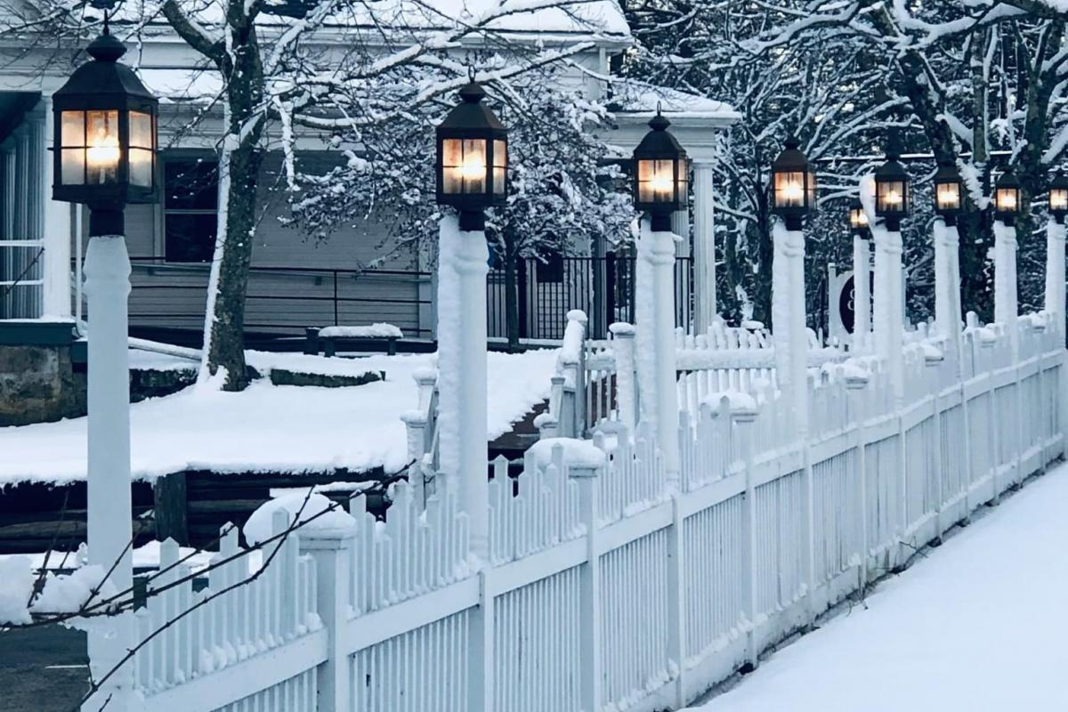Snowy COA